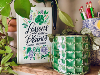 Photograph of Lessons from Plants, by Beronda L. Montgomery, from Harvard University Press, placed on sunny table next to leafy green potted plant and desk organizer