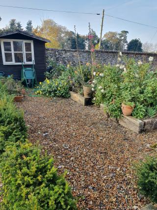 Photo of Richard's garden